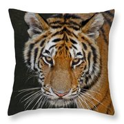 Tiger Hunting Throw Pillow