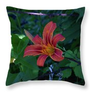 Tiger Lily In June 2018 Throw Pillow