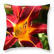 Tiger Lily0064 Throw Pillow