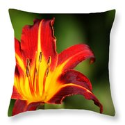 Tiger Lily0078 Throw Pillow