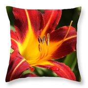 Tiger Lily0170 Throw Pillow