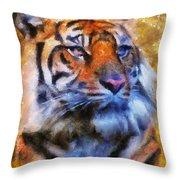 Tiger Portrait Throw Pillow by Jai Johnson