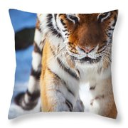 Tiger Strut Throw Pillow