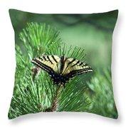 Tiger Swallow Tail Throw Pillow