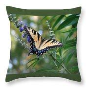 Tiger Swallowtail 1 Throw Pillow