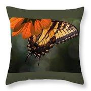 Tiger Swallowtail - 2 Throw Pillow