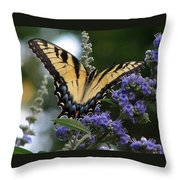 Tiger Swallowtail 3 Throw Pillow