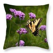 Tiger Swallowtail Among The Verbena   Throw Pillow