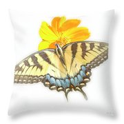 Tiger Swallowtail Butterfly, Cosmos Flower Throw Pillow