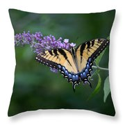 Tiger Swallowtail Female On Butterfly Bush Flowers Throw Pillow