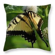 Tiger Swallowtail On Button Bush Throw Pillow