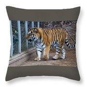 Tiger Territory 4 Throw Pillow