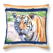 Tiger With Border Throw Pillow