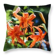 Tigers In The Sun Throw Pillow