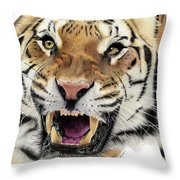 Tigers Pace Throw Pillow