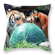 Tigers Playing Throw Pillow