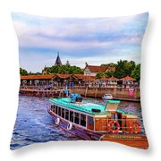 Tigre Delta 015 Throw Pillow