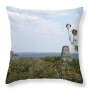 Tikal IIi Throw Pillow