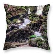 Tillium Falls Throw Pillow