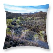 Tilt-shift Desert Wash Throw Pillow
