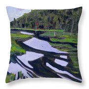 Tim River - Algonquin Throw Pillow