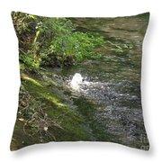 Timava's Spring I Throw Pillow