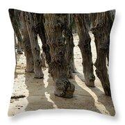 Timber Textures Lll Throw Pillow