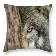 Timber Wolf Picture - Tw285 Throw Pillow