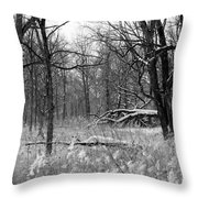 Timberland Infrared No1 Throw Pillow