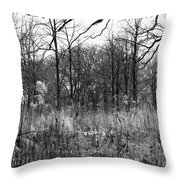 Timberland Infrared No2 Throw Pillow
