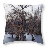 Time And Cypress Throw Pillow