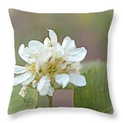 Time Throw Pillow by Beauty For God