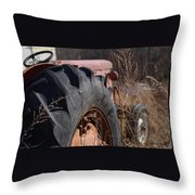 Time Beyond The Grass Throw Pillow