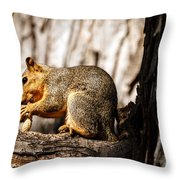 Time For A Peanut Throw Pillow