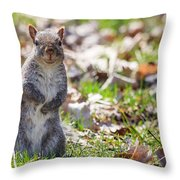 Time For Dinner? Throw Pillow