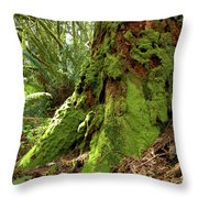 Time Lost Throw Pillow
