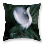 Time N Motion Throw Pillow