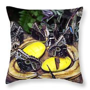 Time Out For Lunch Throw Pillow