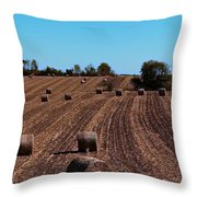 Time To Bale In Color Throw Pillow