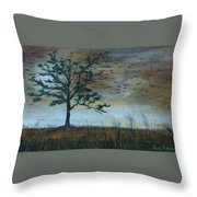 Time To Fly Away - Sold Throw Pillow