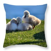 Time To Snuggle Throw Pillow