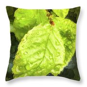 Time Travel Summer Leaves Throw Pillow