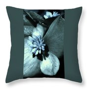 Calm And Cool Throw Pillow