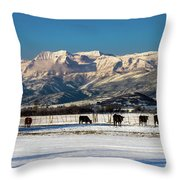 Timpanogos From The North Fields Throw Pillow