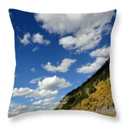 Timpooneke View Throw Pillow