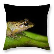 Tink Frog Diasporus Diastema Throw Pillow