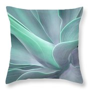 Tinted Agave Attenuata Abstract Throw Pillow