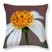 Tiny Ants In Tiny Flower Throw Pillow