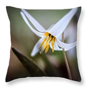Tiny Beauty Throw Pillow