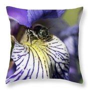 Tiny Bee Throw Pillow